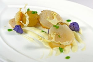 Sous vide scallops truffled cauliflower creamer potatoes_edited-1